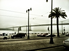 Bay Bridge Beauty